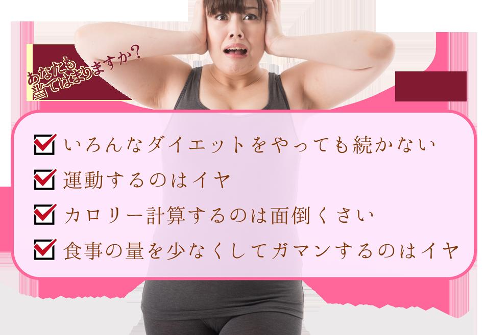 運動しないダイエット、食べても良いダイエットはリジョイスダイエット